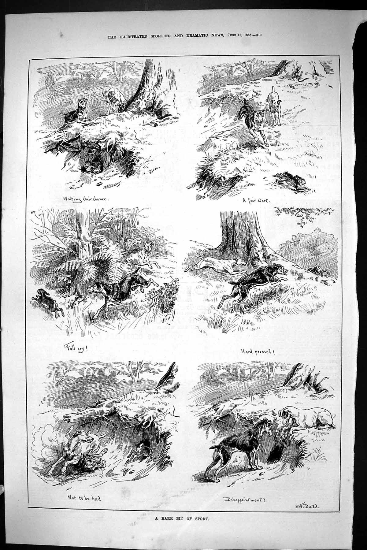 [Print Sporting Dramatic News 1885 Hunting Sport Hares Hounds Dogs 342J423 Old Original]