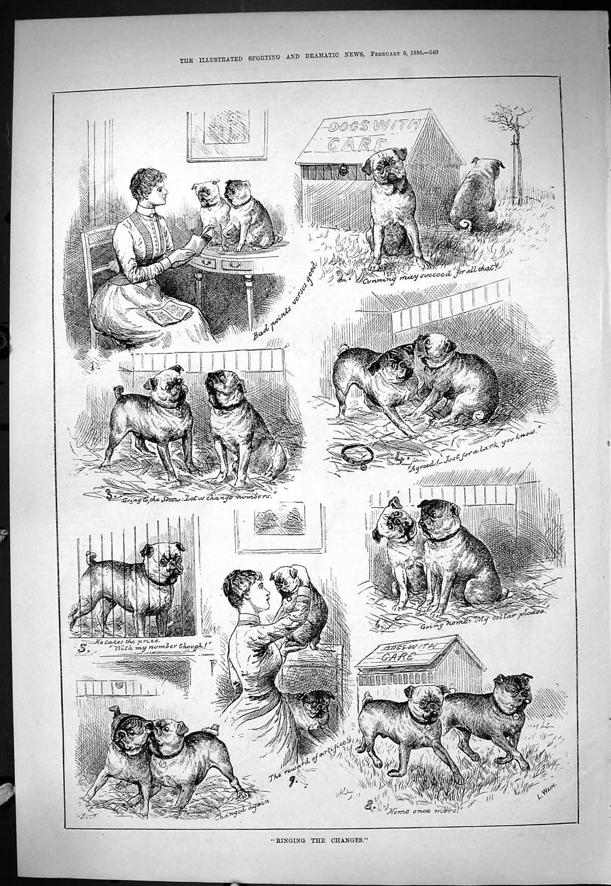 [Print Sporting Dramatic News 1886 Ringing Changes Dogs Wain Captious Cr 540J424 Old Original]