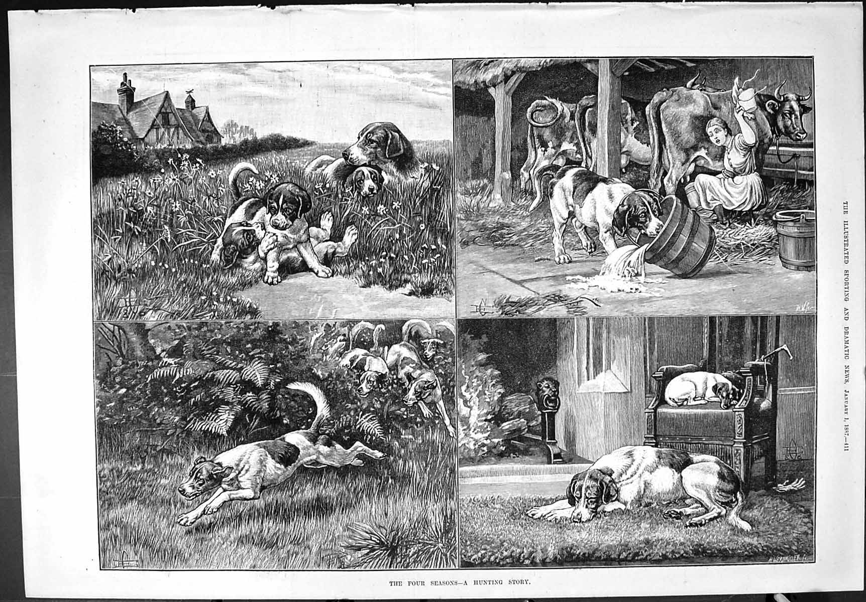[Print Sporting Dramatic News 1887 Hunting Story Hounds Dogs Milking Cow 411J426 Old Original]