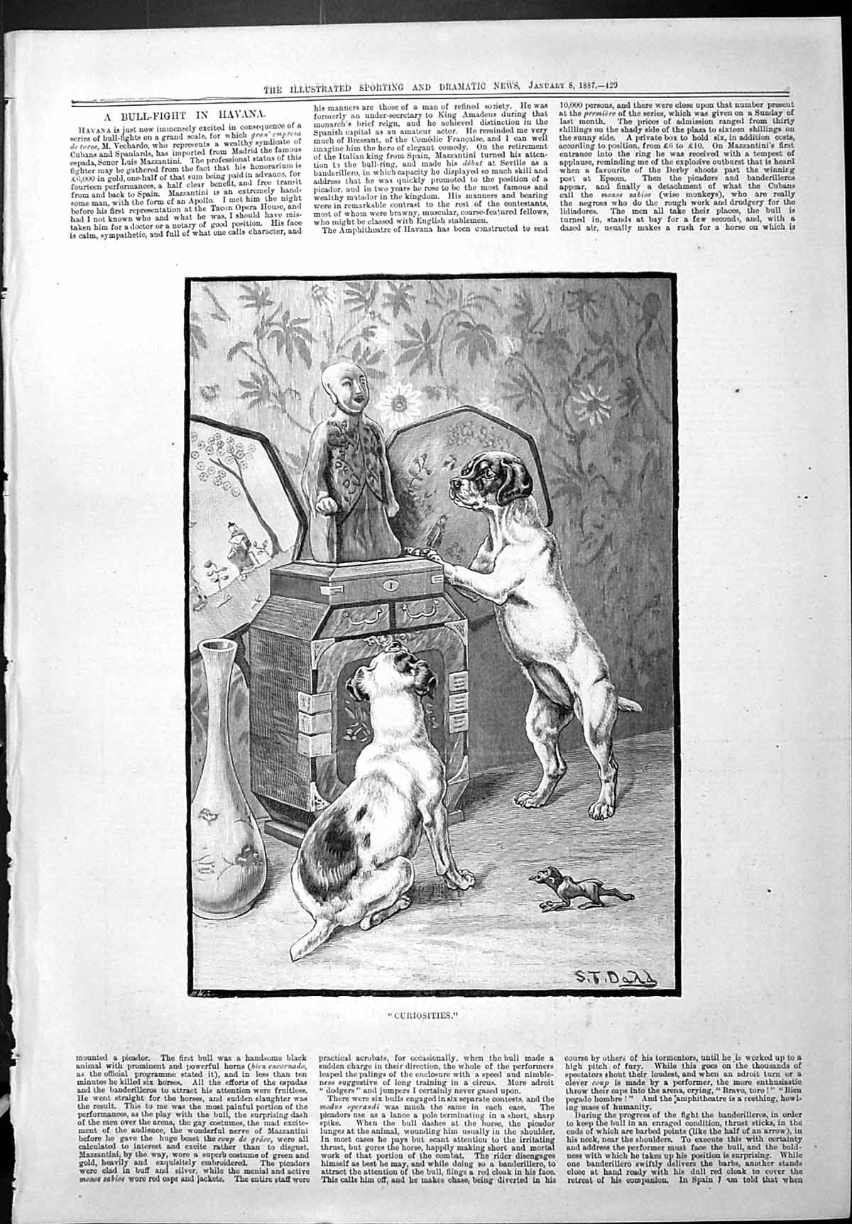 [Print Sporting Dramatic News 1887 Curiosities Puppy Dogs Chinese Orname 429J426 Old Original]