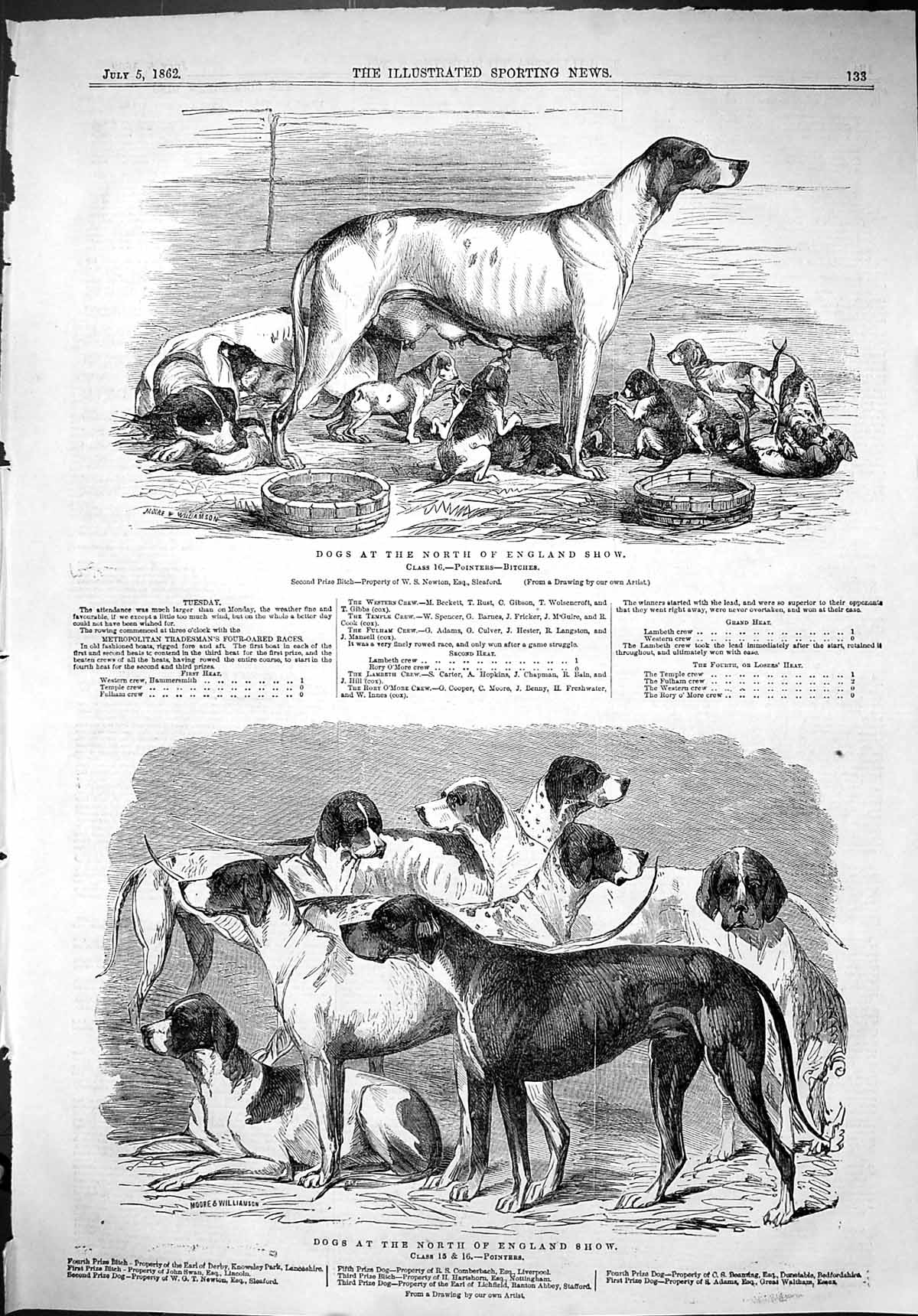 [Print 1862 Dogs North England Show Pointers Bitches Earl Derby Adams Ha 133J501 Old Original]