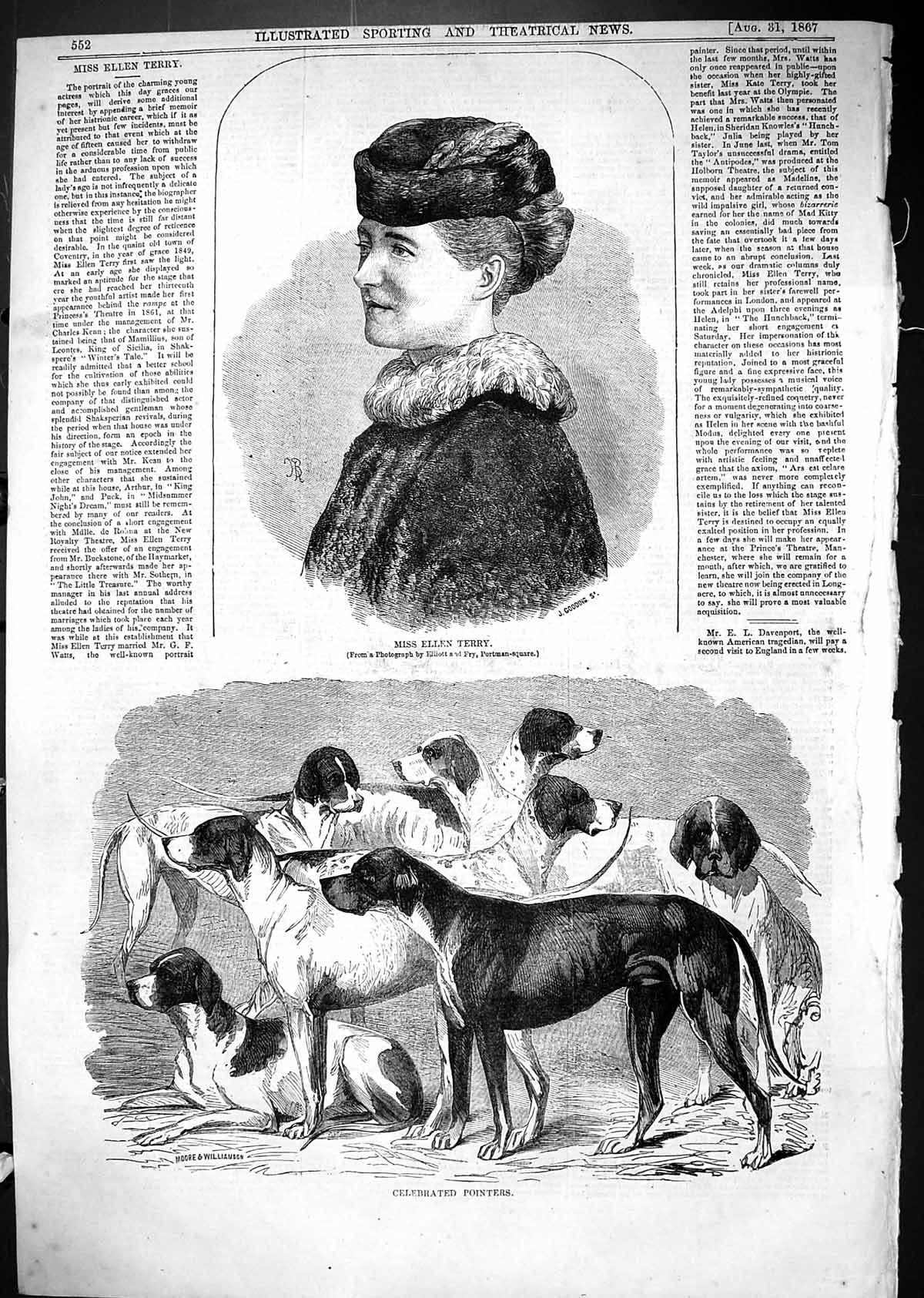 [Print 1867 Miss Ellen Terry Celebrated Pointers Sporting Dogs 552J506 Old Original]