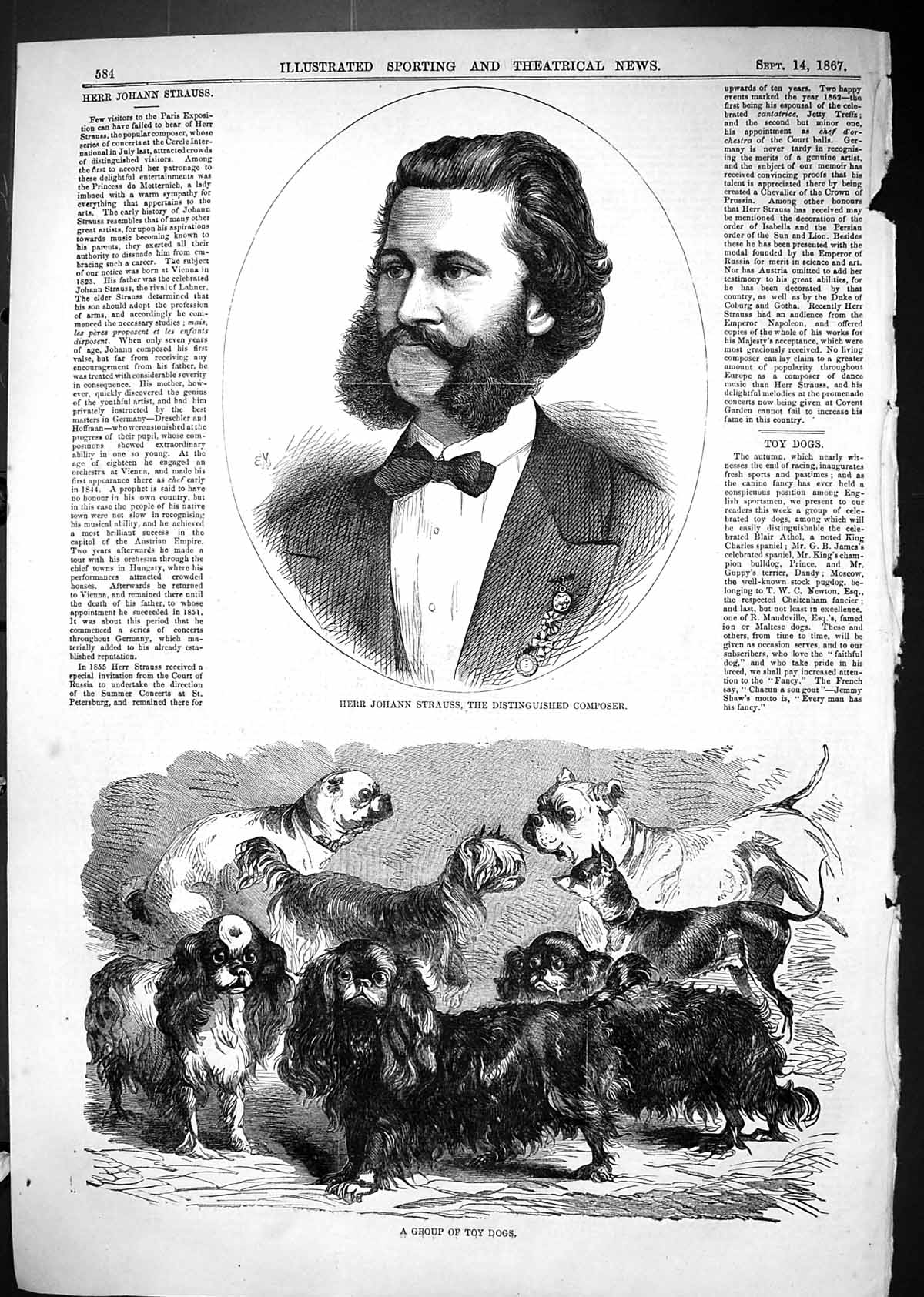 [Print 1867 Herr Johann Strauss Distinguished Composer Group Toy Dogs 584J506 Old Original]