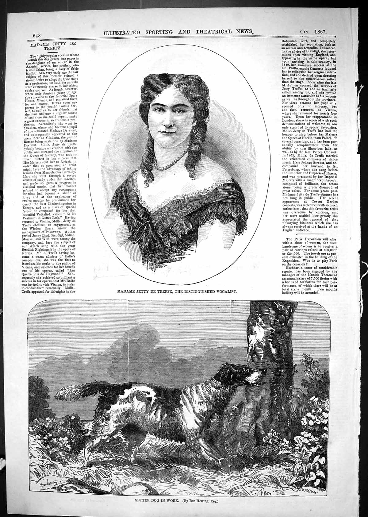 [Print 1867 Madame Jetty De Trefez Vocalist Setter Dog Work Hunting 648J506 Old Original]