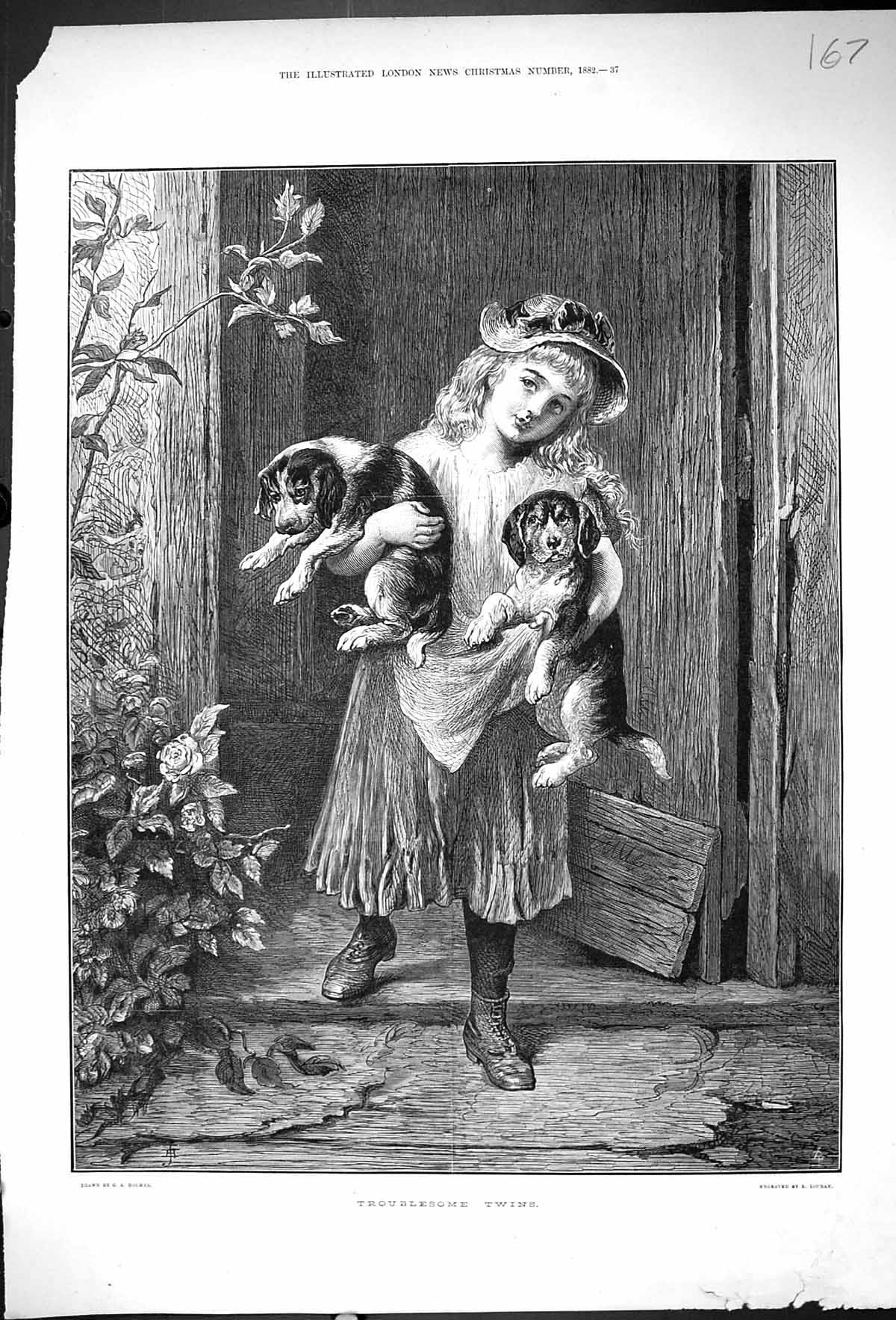 [Print 1882 Troublesome Twins Young Girl Puppy Dogs 167J507 Old Original]