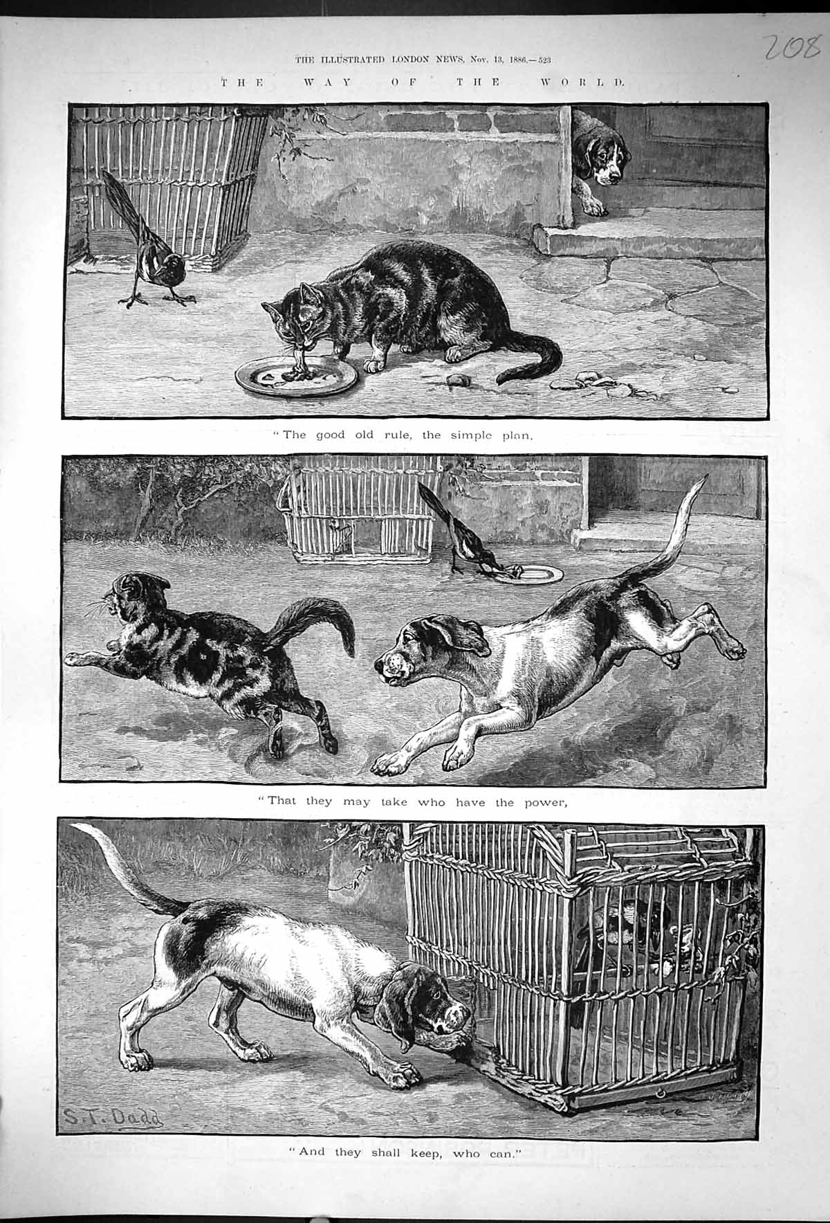 [Print 1886 Dogs Cats Way Of The World Dadd Birds Cage 208J507 Old Original]