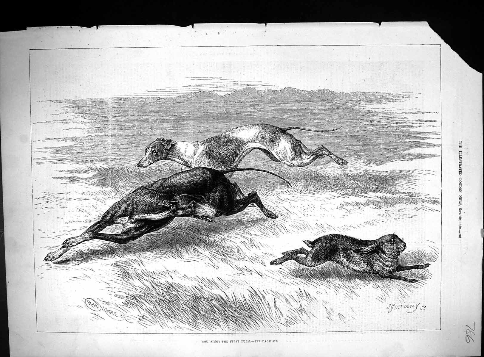 [Print 1879 Hare Coursing Hounds Dogs Sport Racing Moore Greenaway 786J509 Old Original]