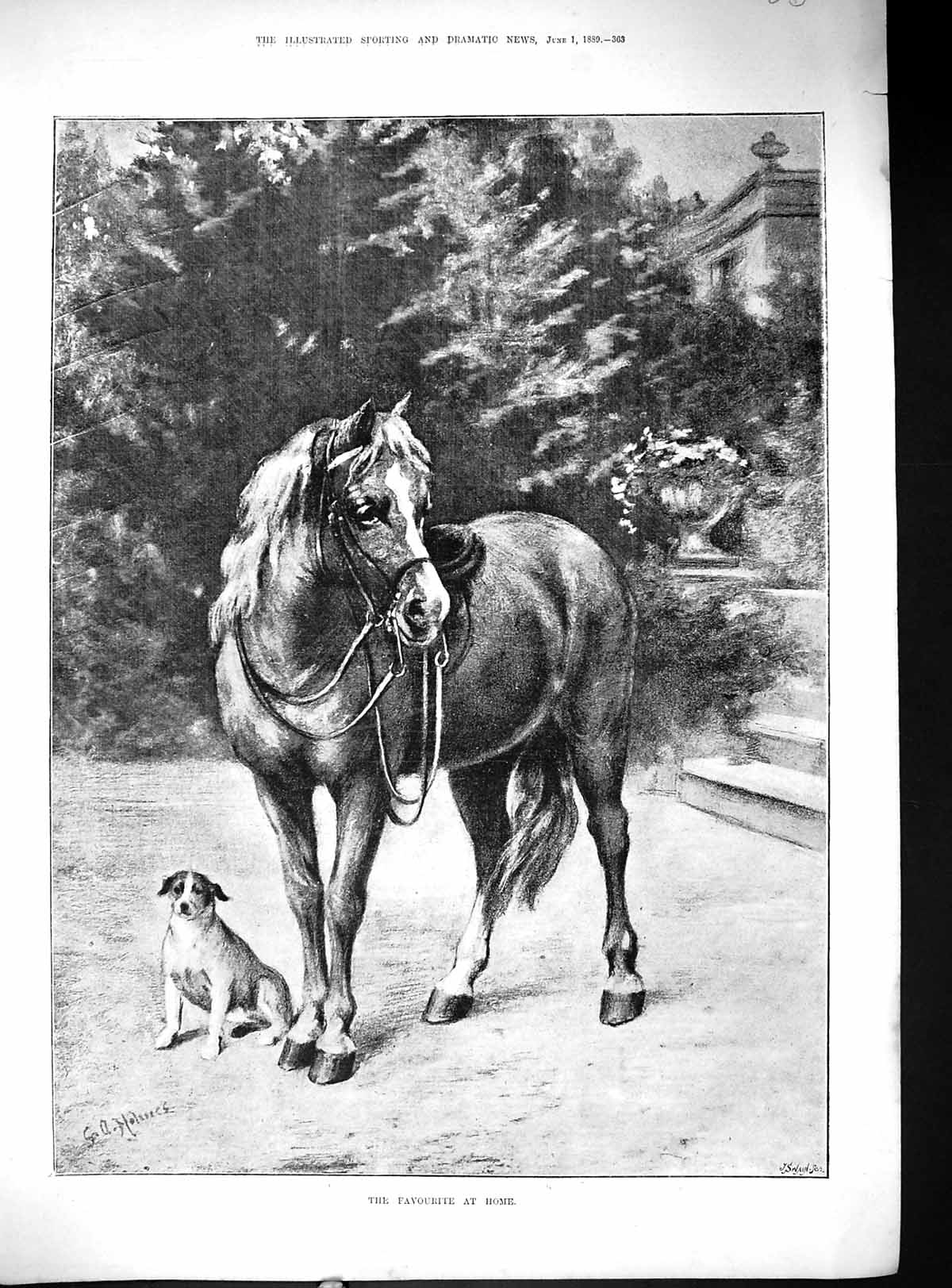 [Print 1889 Favourite At Home Pony Horse Puppy Dog Swain 840J509 Old Original]
