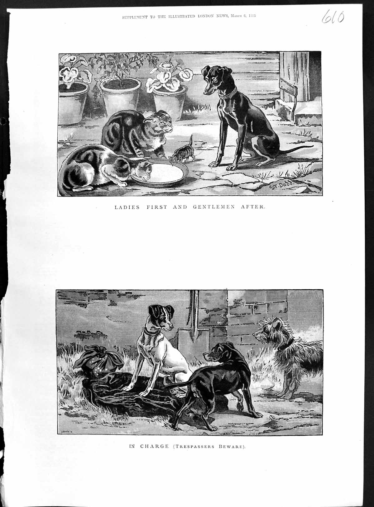 [Print 1886 Colour Animals Cats Dogs Kittens Food Bowl 610J514 Old Original]