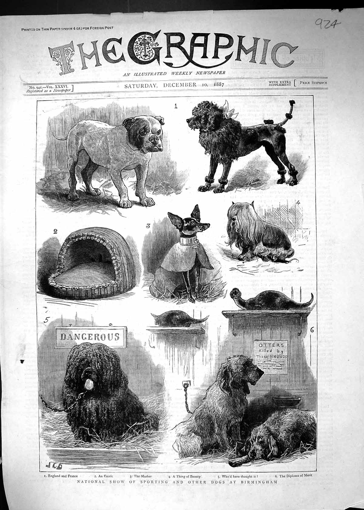 [Print 1887 National Show Sporting Dogs Birmingham Hounds Bulldog 924J515 Old Original]