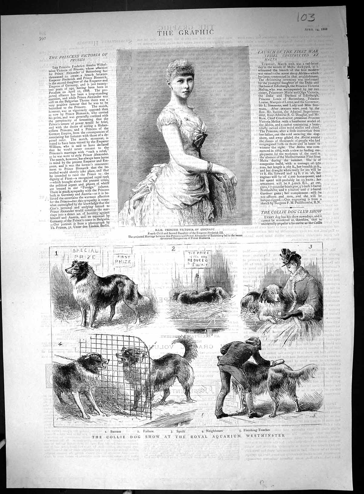 [Print 1888 Collie Dog Show Royal Aquarium Westminster Princess Germany 103J516 Old Original]