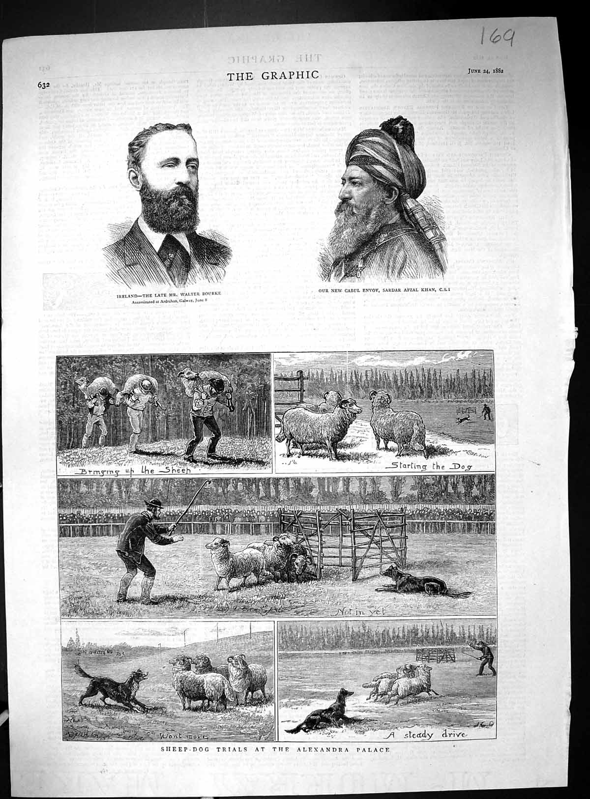 [Print 1882 Ireland Bourke Cabul Envoy Sardar Khan Sheep Dog Trials Alex 169J516 Old Original]