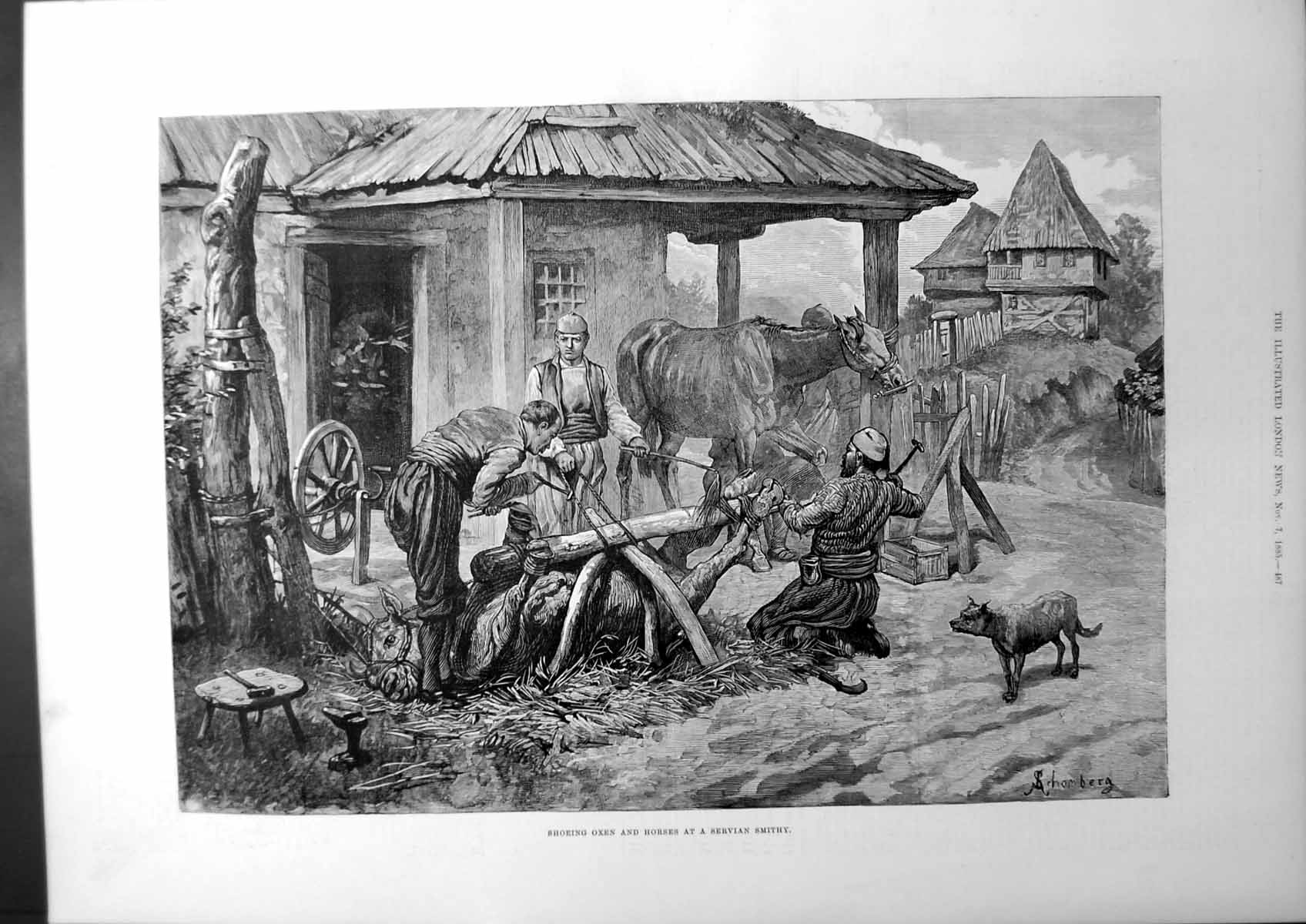 [Print Shoeing Oxen And Horses At A Servian Smithy Farm-House Dog 1885 157J669 Old Original]