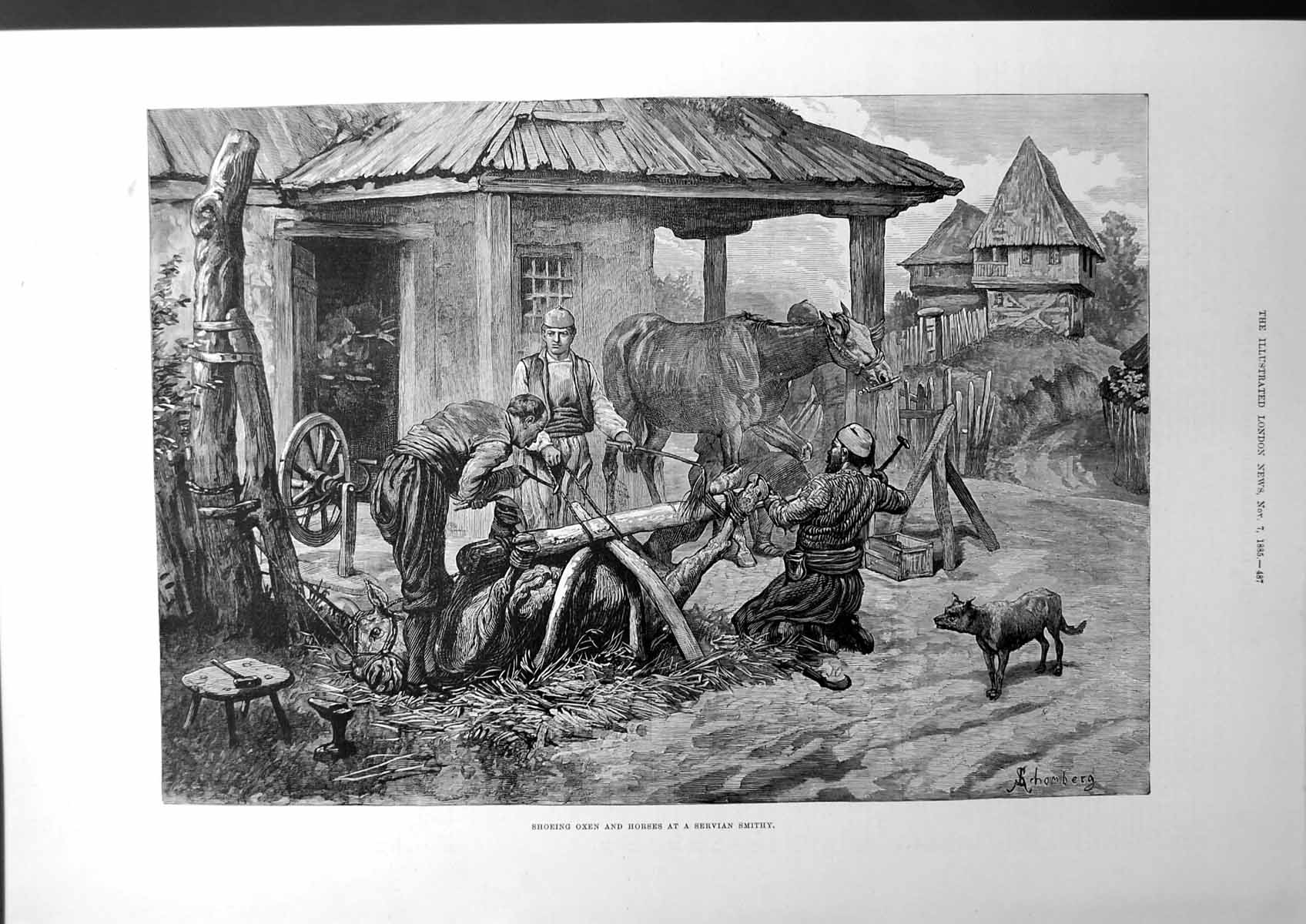 [Print Shoeing Oxen And Horses At A Servian Smithy Farm-House Dog 1885 2 164J669 Old Original]