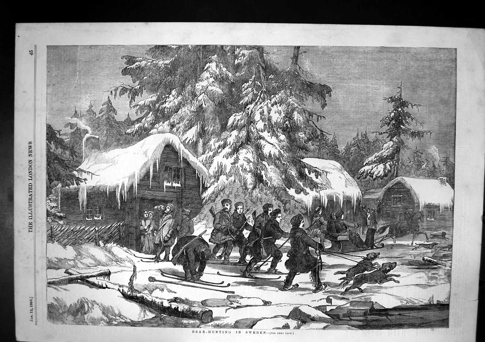 [Print Bear Hunting Sweden Shooters Dogs Sleigh Hut Snow 1856 203J683 Old Original]