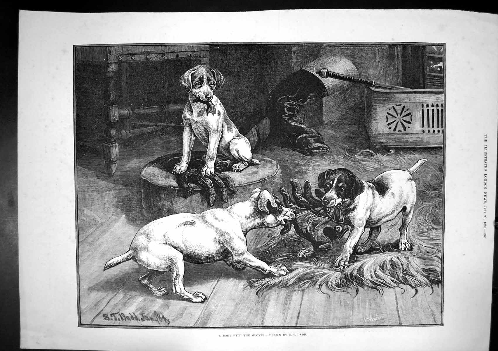 [Print Bout With Gloves St Dadd Dogs Pulling Glove In Mouths 1885 214J683 Old Original]