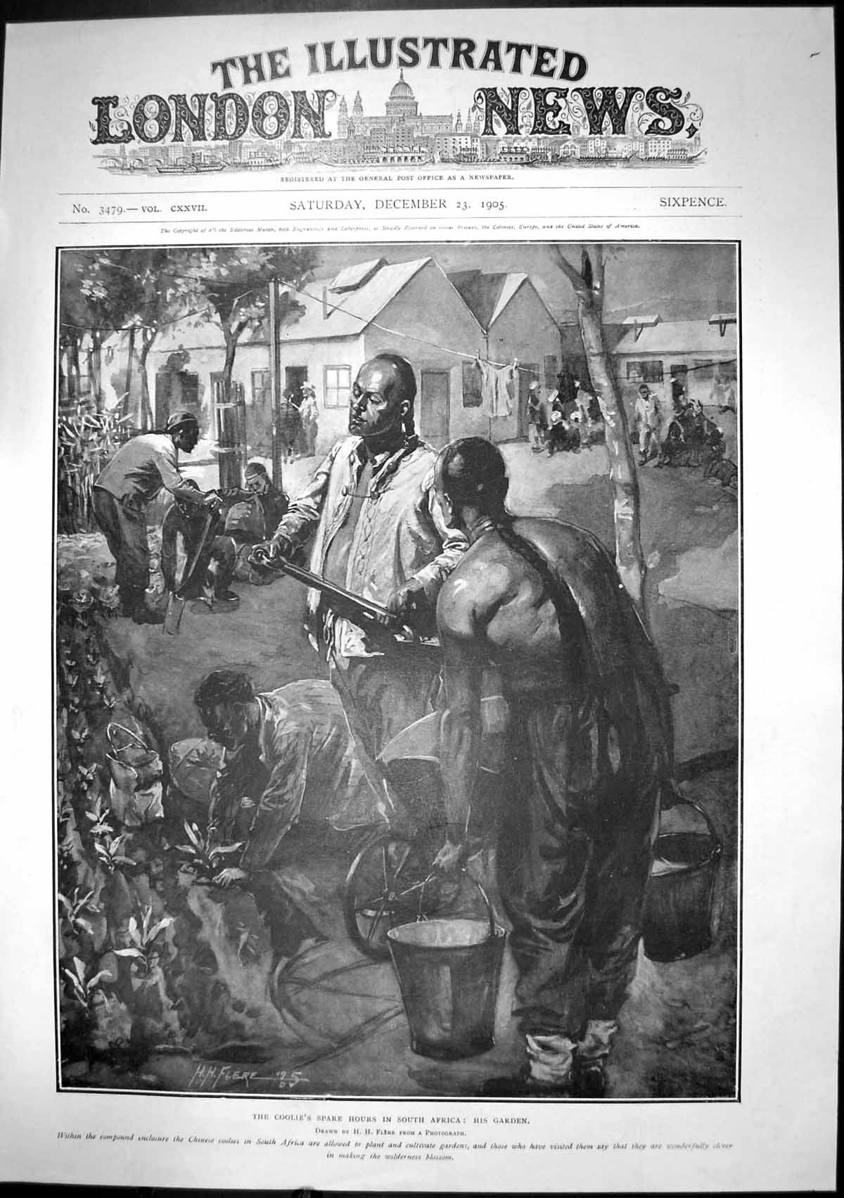 [Print Coolies Spare Hours South Africa His Garden 1905 264J683 Old Original]