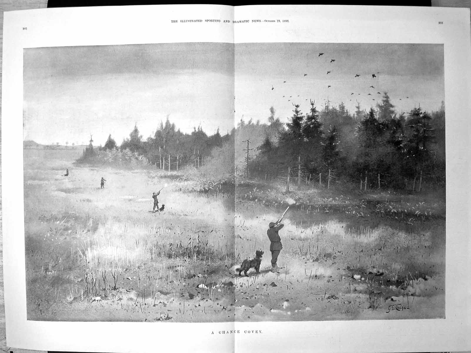 [Print A Chance Covey Men Dogs Shooting Birds Rising Over Trees 1898 129J708 Old Original]