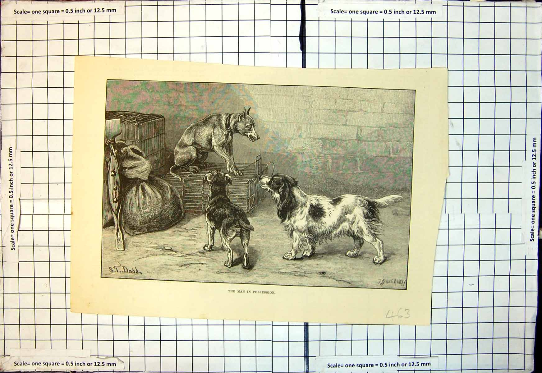 [Print Man In Possession J Greenaway S Dadd Dog Cage Growl Other Dogs 463J713 Old Original]