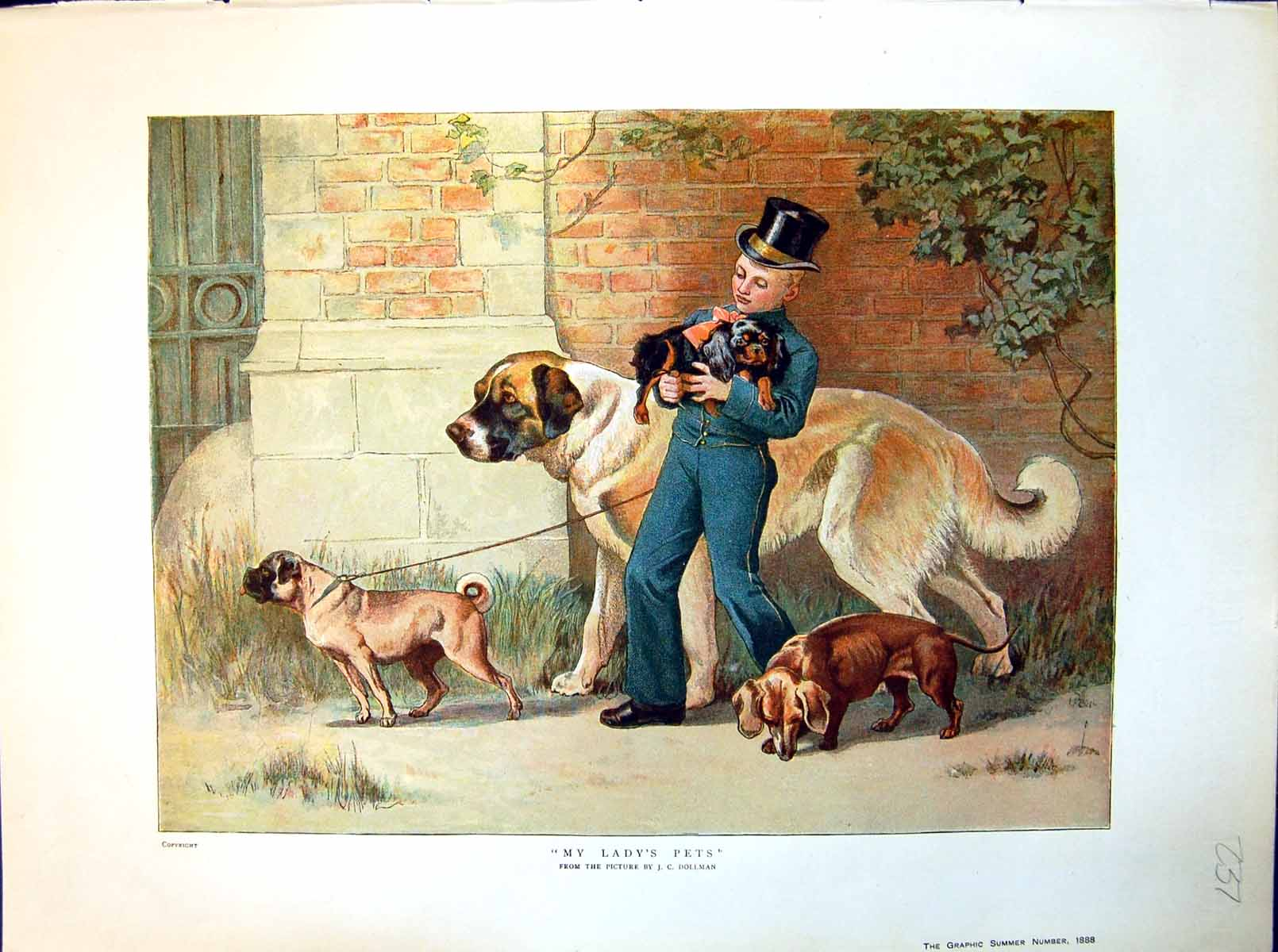 [Print My Lady'S Pets Jc Dollman Young Lad With Various Size Dogs 1888 237J714 Old Original]