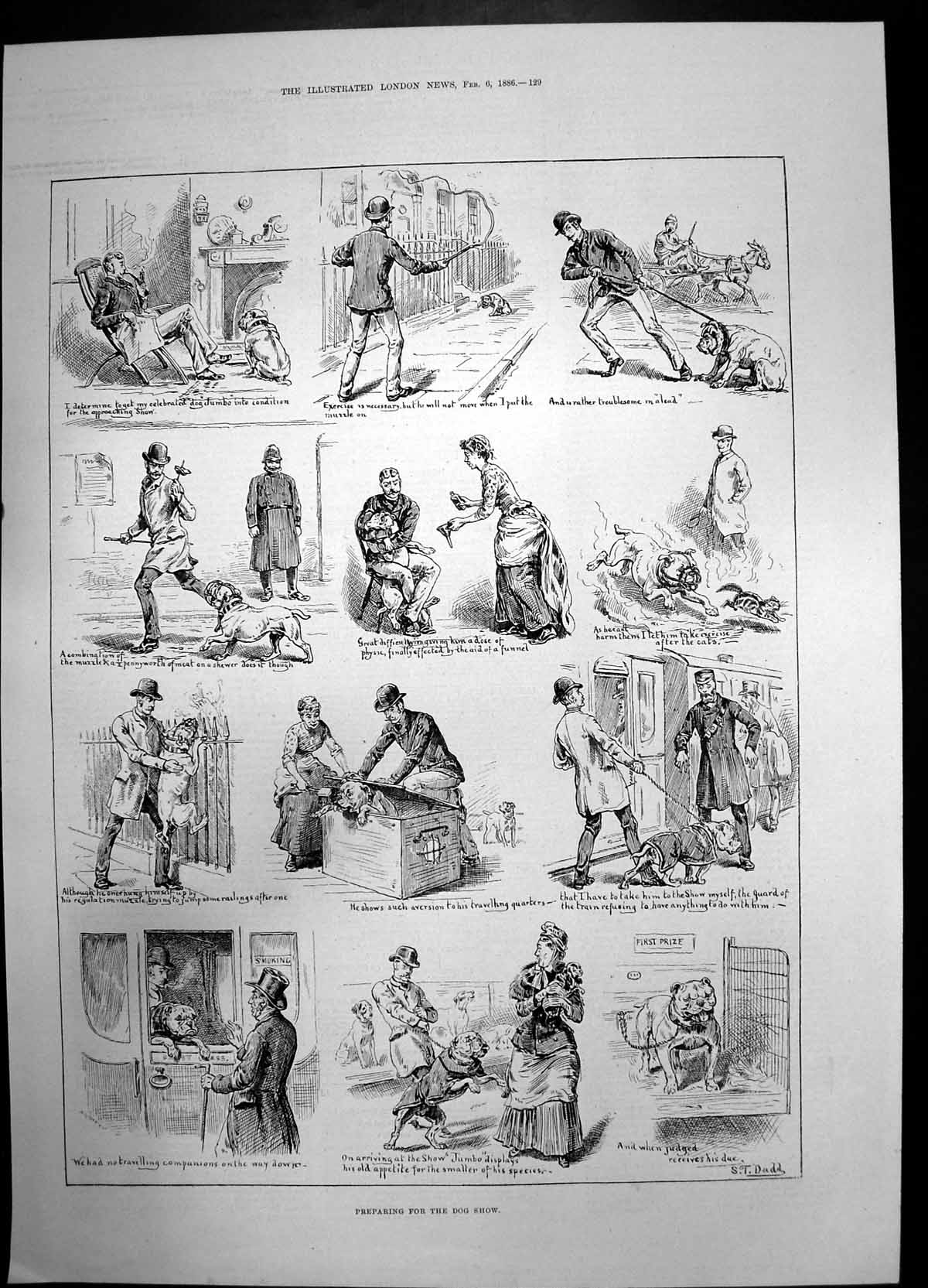 [Print Preparing For The Dog Show 1886 Cat First Prize Dadd Sketches 723J735 Old Original]