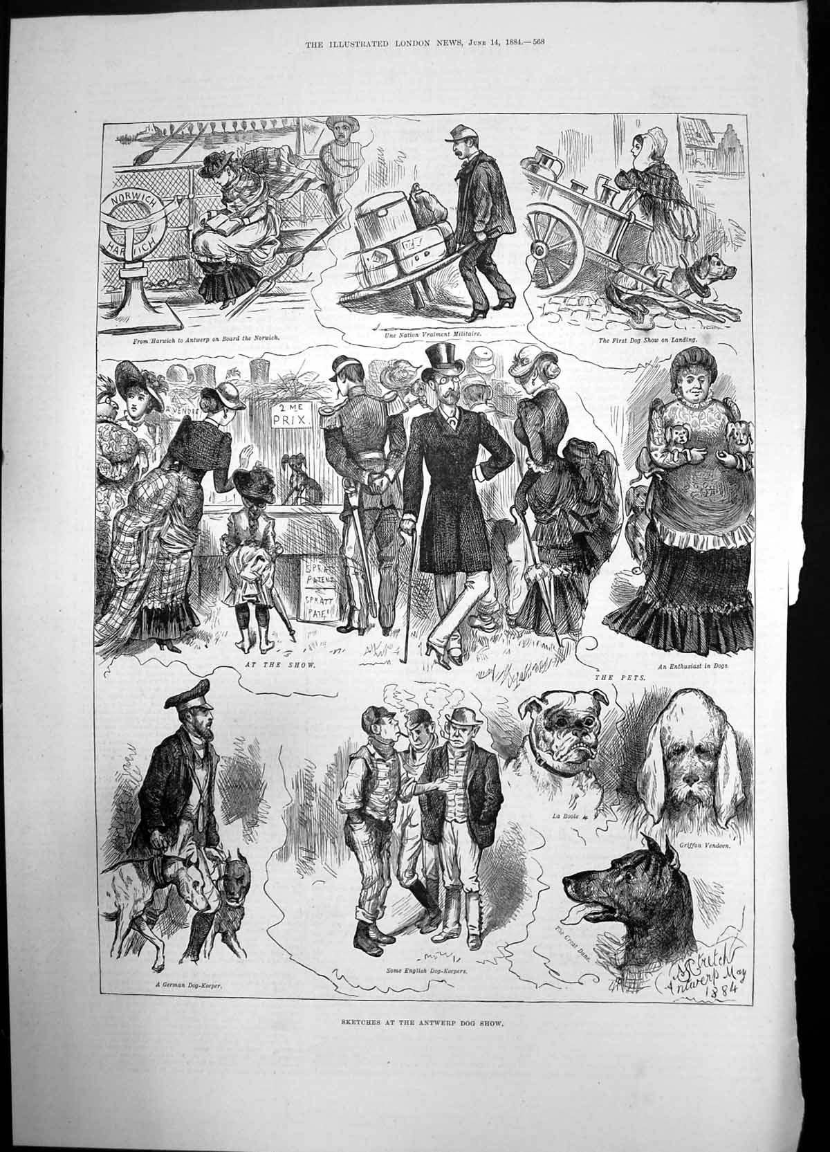 [Print Sketches Antwerp Dog Show 1884 Pets German English Keeper 734J735 Old Original]