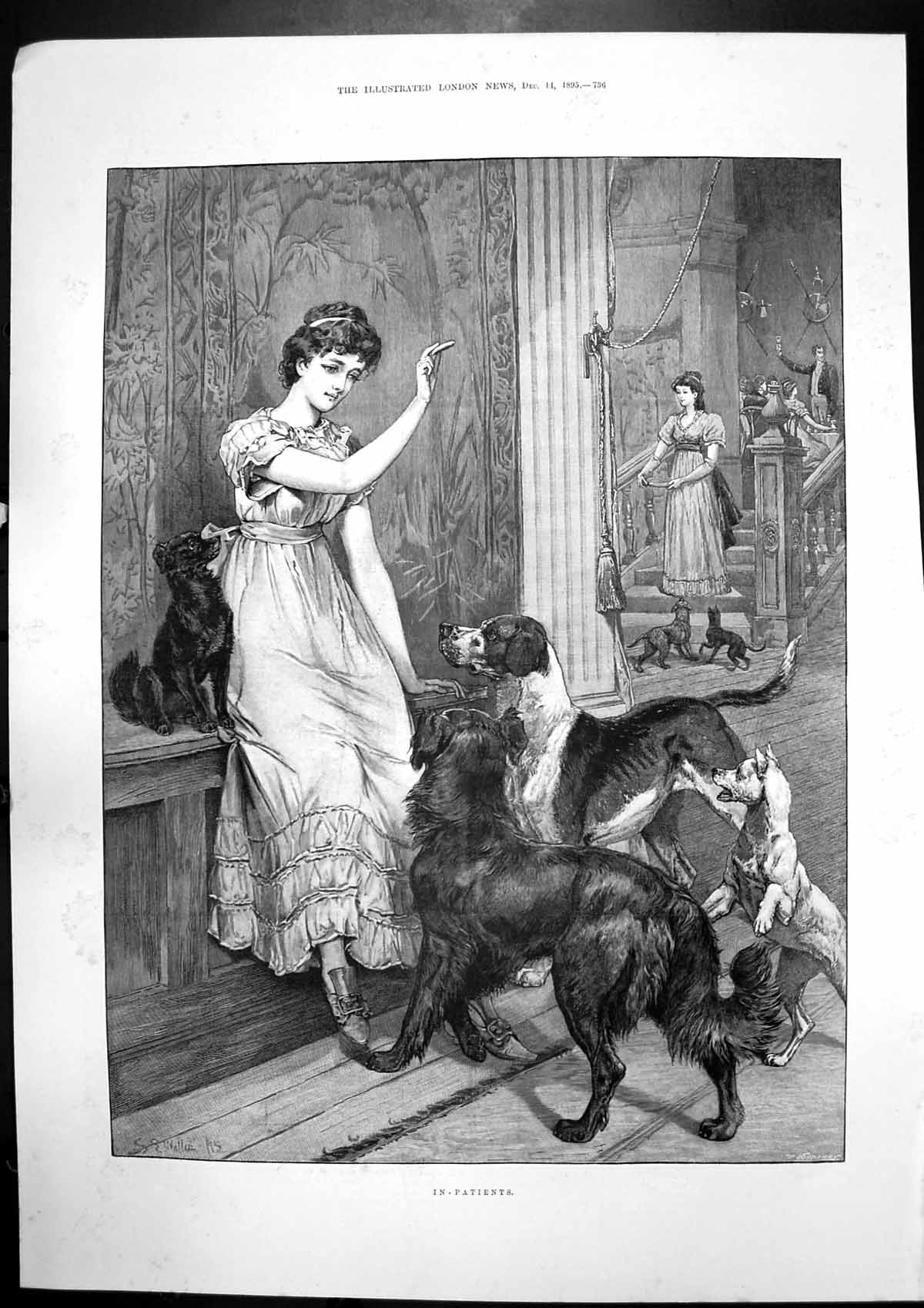 [Print In-Patients Dogs Camels Road Great Fingall Mine Condenser 1895 226J751 Old Original]