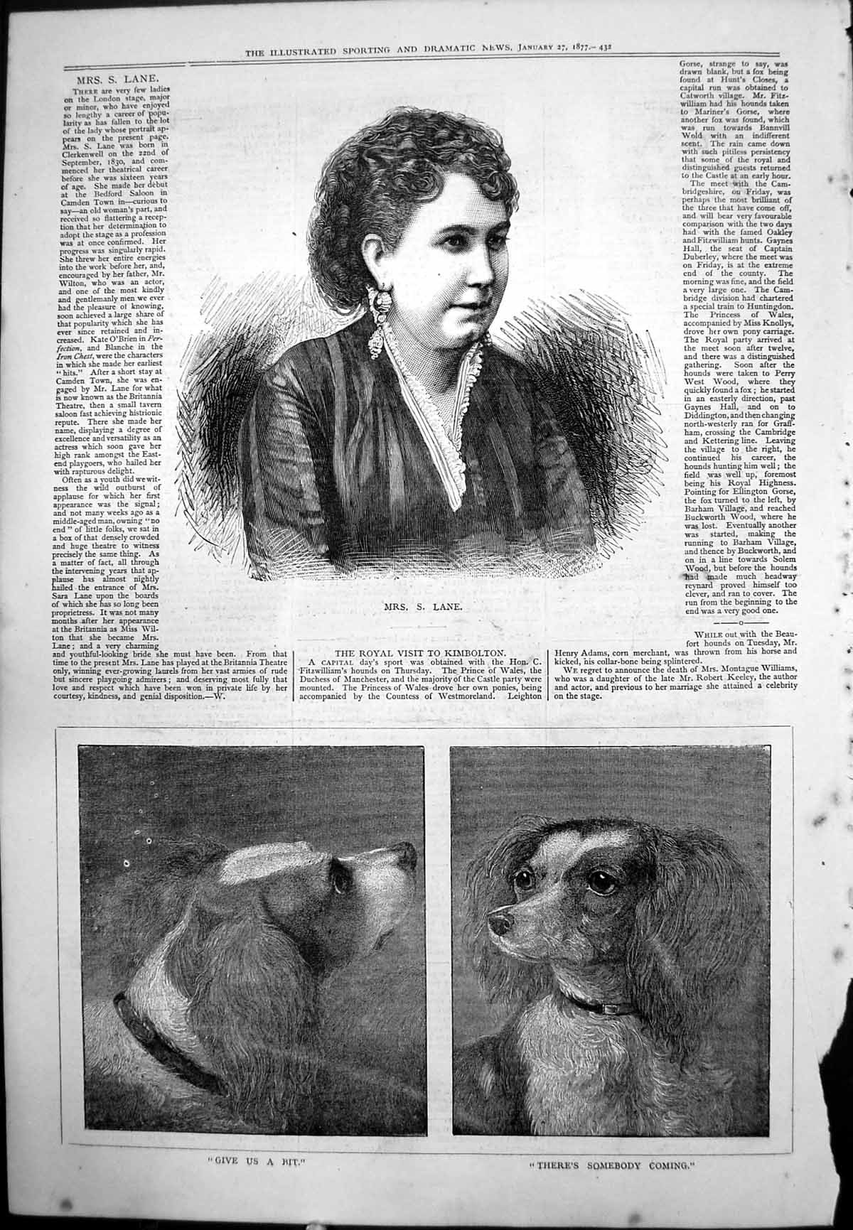 [Print Mrs S Lane London Stage Earring Lace Edged Dress Portrait Dogs 1877 213J771 Old Original]