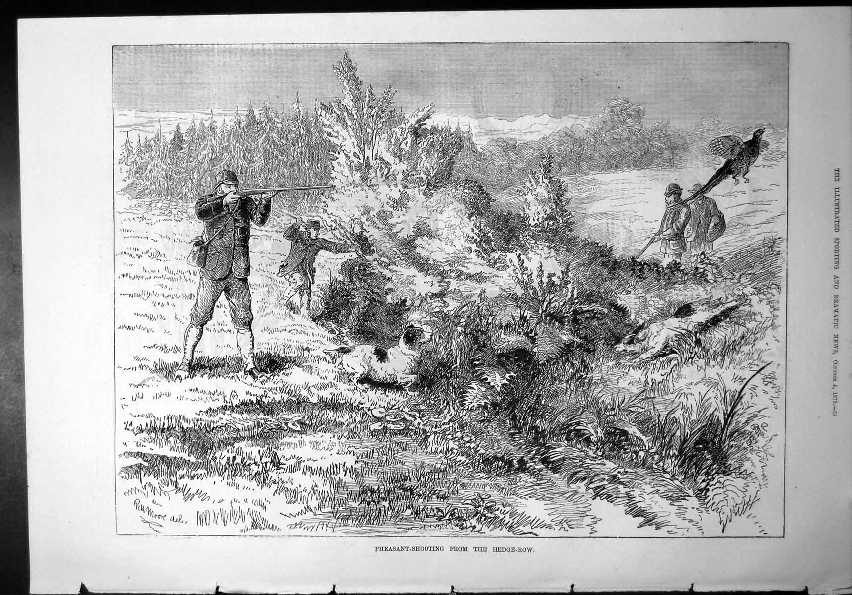 [Print Pheasant Shooting From Hedge Row Beaters Man Hunting Dogs 1879 844J773 Old Original]