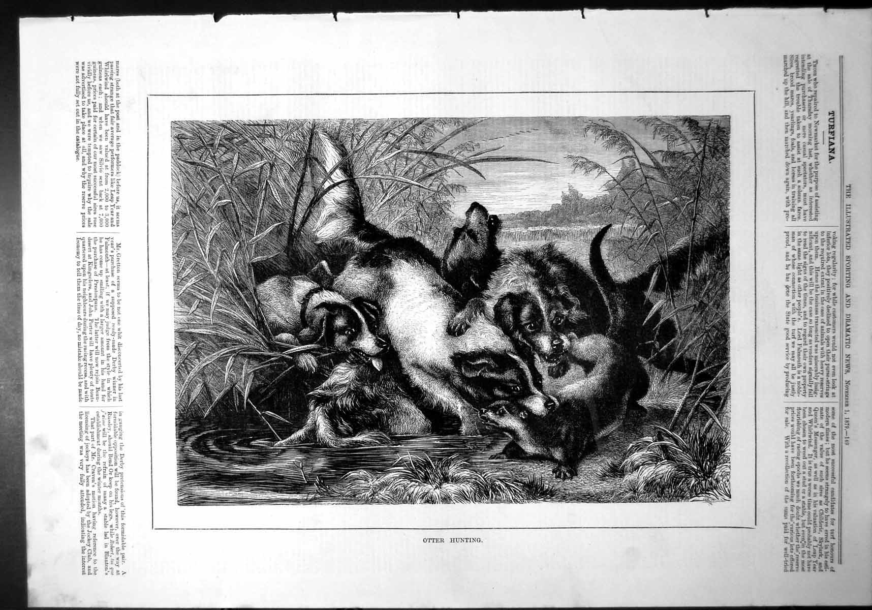 [Print Otter Hunting Caught Neck Dogs Water Reeds Riverbank 1879 866J773 Old Original]