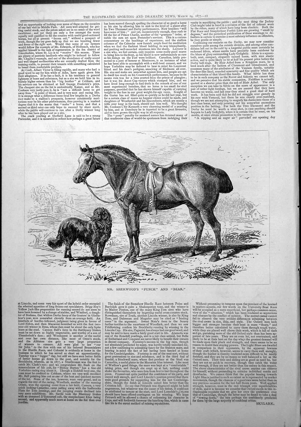 [Print Mr Sherwoods Punch Bear Horse Dog Whip In Mouth 1877 742J779 Old Original]