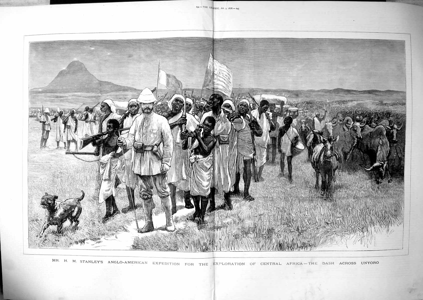 [Print Hm Stanleys Exploration C Africa Dash Across Unyoro Cattle 1878 114TJ781 Old Original]