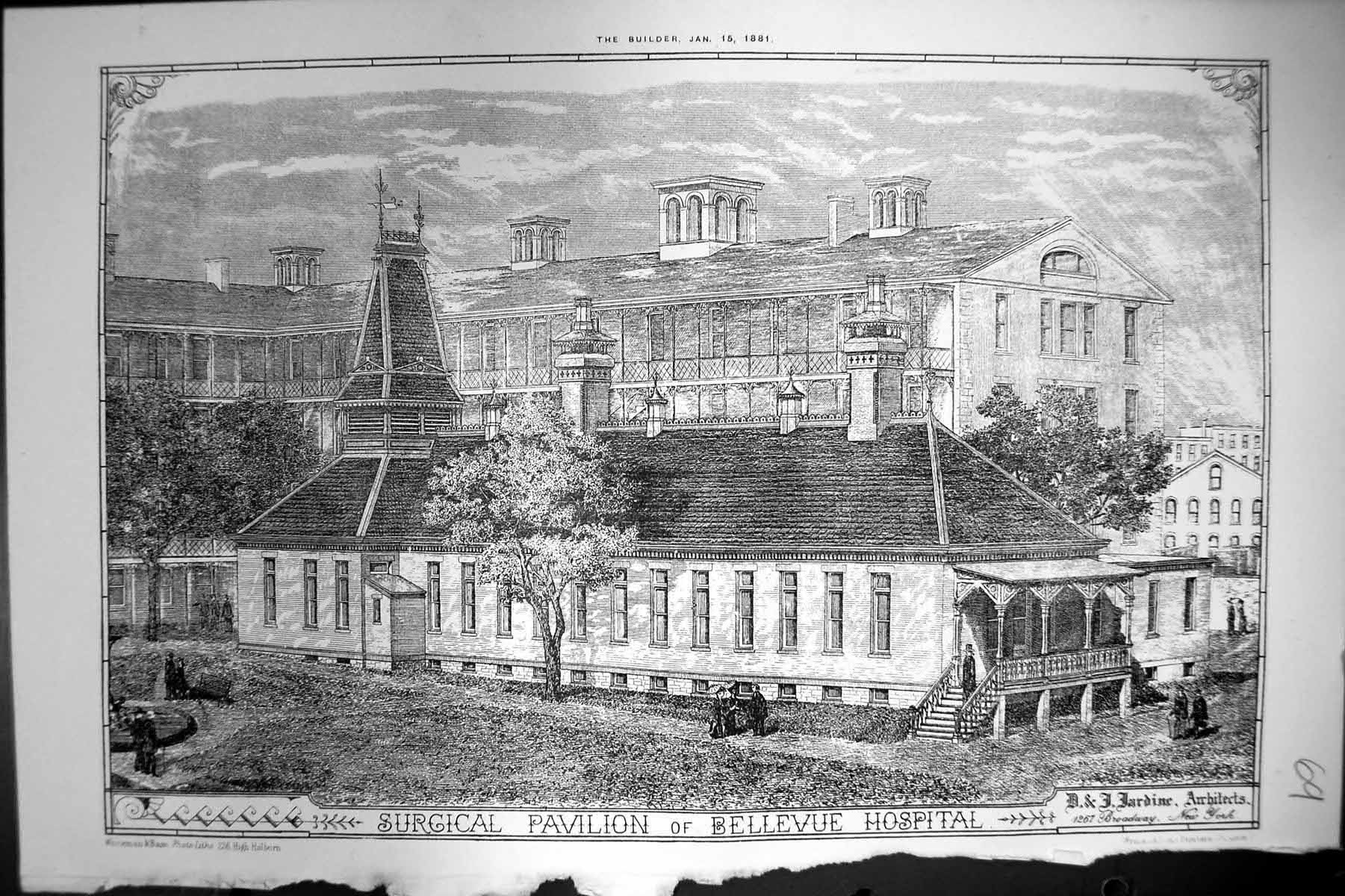 [Print Surgical Pavilion Bellevue Hospital D J Jardine Architects 1881 069L140 Old Original]