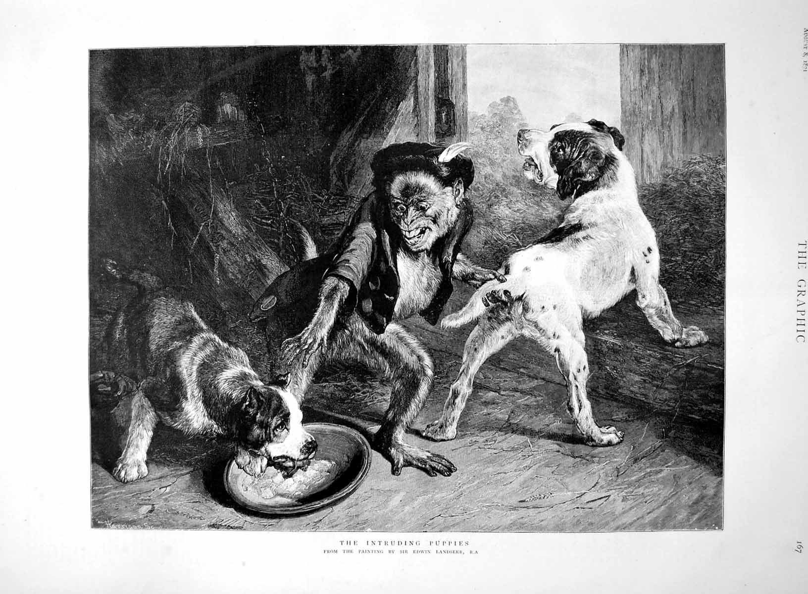 [Print Prints The Intruding Puppies Sir Edwin Landseer Monkey Two Dogs 1891 167M009 Old Original]
