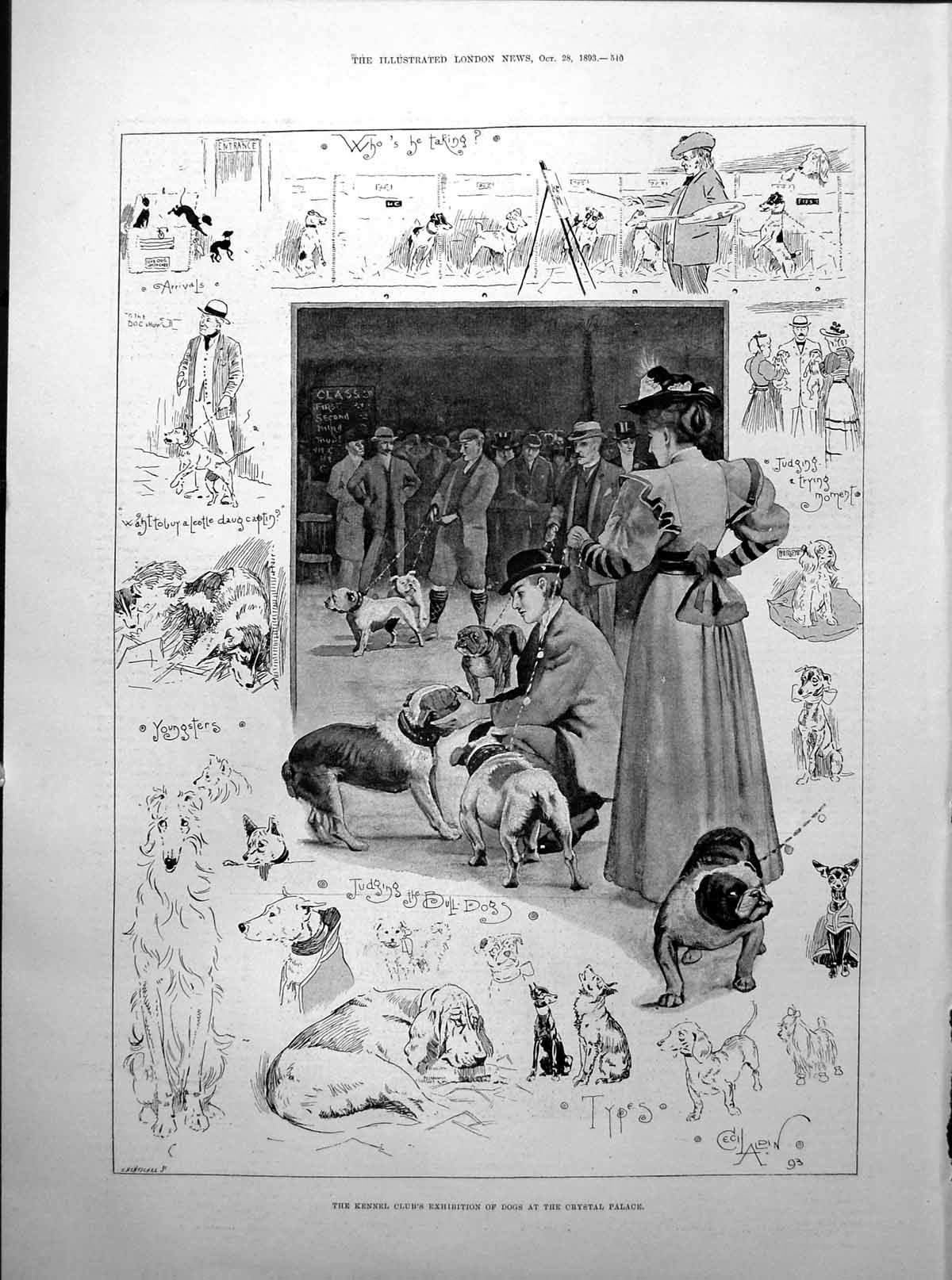 [Print Kennel Club Dogs Crystal Palace Lady Holding Onto Rocks 1893 540Rp203 Old Original]