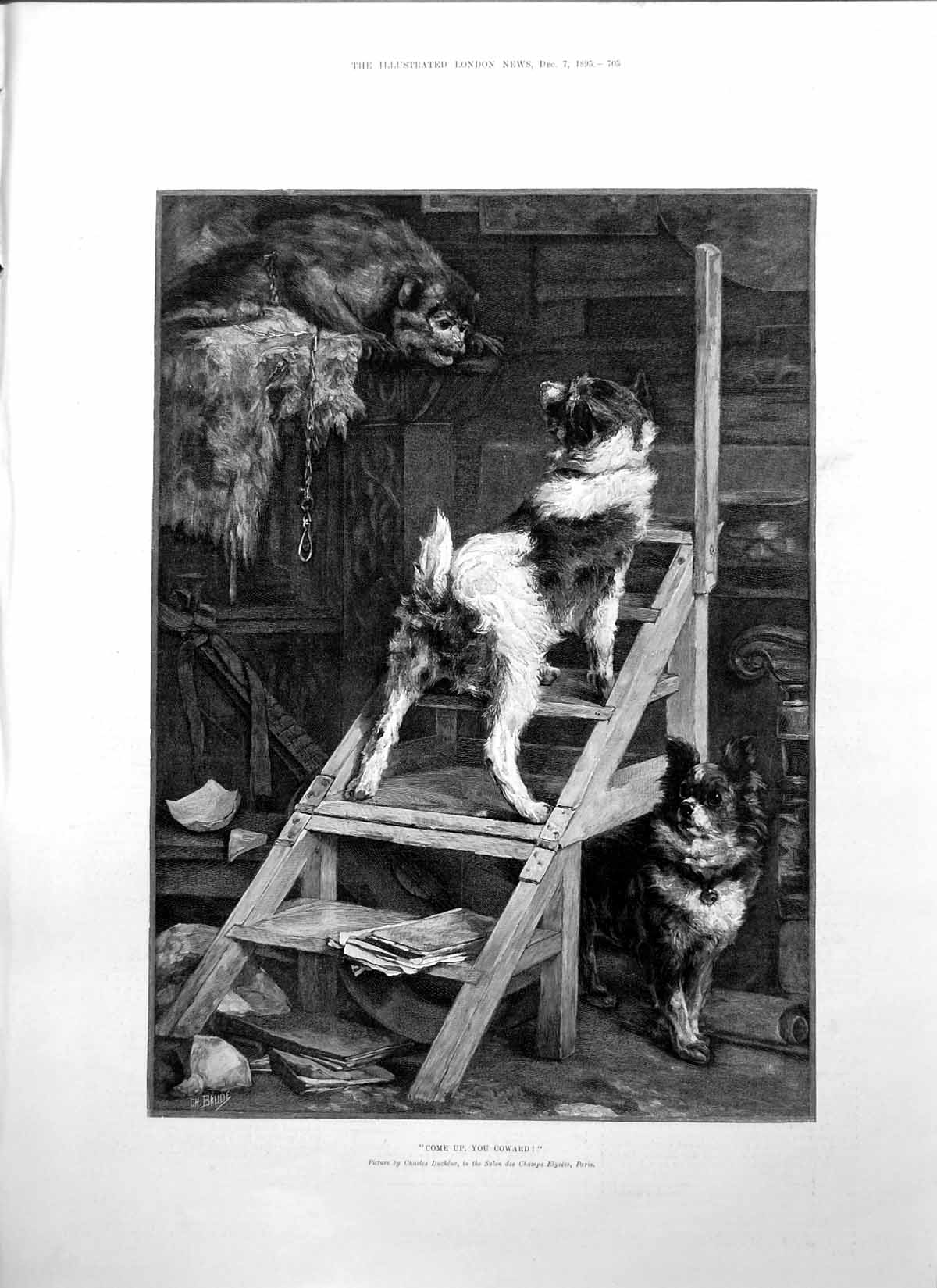 [Print Come Up Coward Charles Duchene Monkey Dogs Ladder 1895 705P207 Old Original]