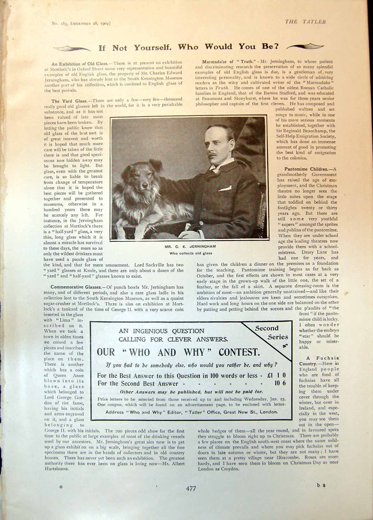 [Print C Jerningham Dog Collects Glass Who And Why Contest 1904 477Q014 Old Original]