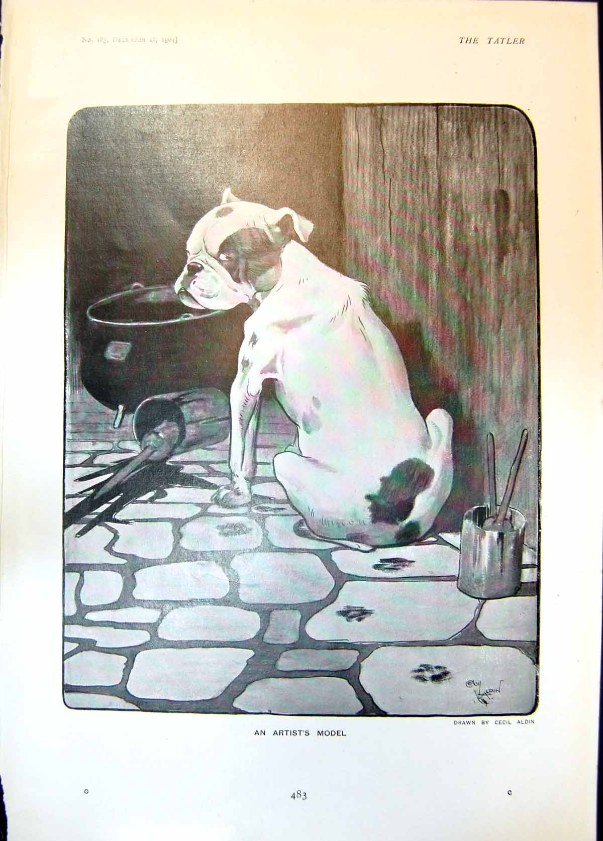 [Print Artists Model Cecil Aldin Dog Spilling Paint 1904 483Q014 Old Original]
