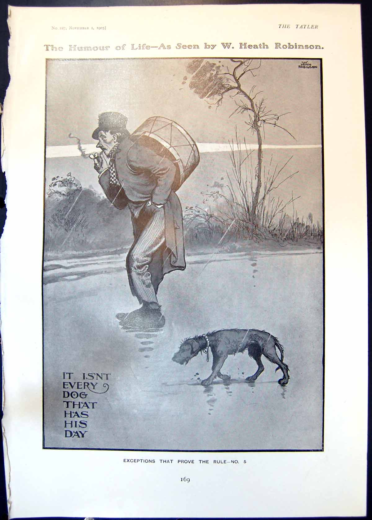[Print Humour W Robinson Thin Dog Drummer Countess Shaftesbury 1905 169Q018 Old Original]