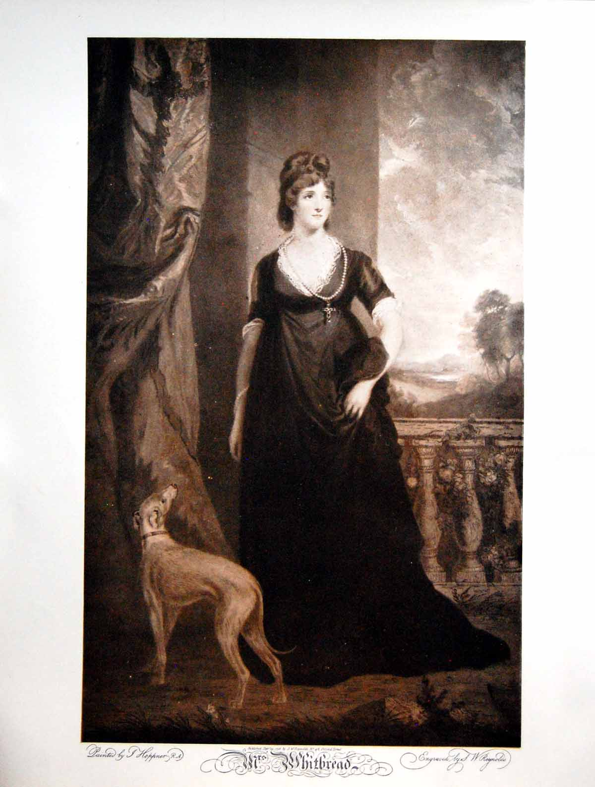 [Print Mrs Whitbread Painted And Engraved Dog Stonework 1908 304Q121 Old Original]
