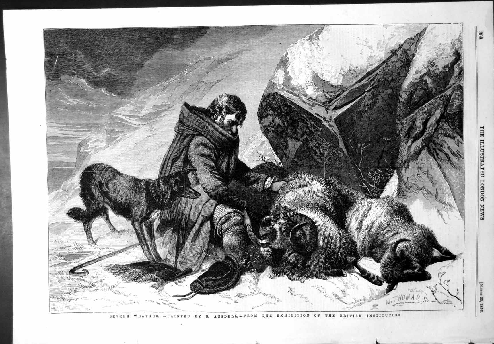[Print Severe Weather R Ansdell Shepherd Sheep Dog Storm 1856 488T108 Old Original]