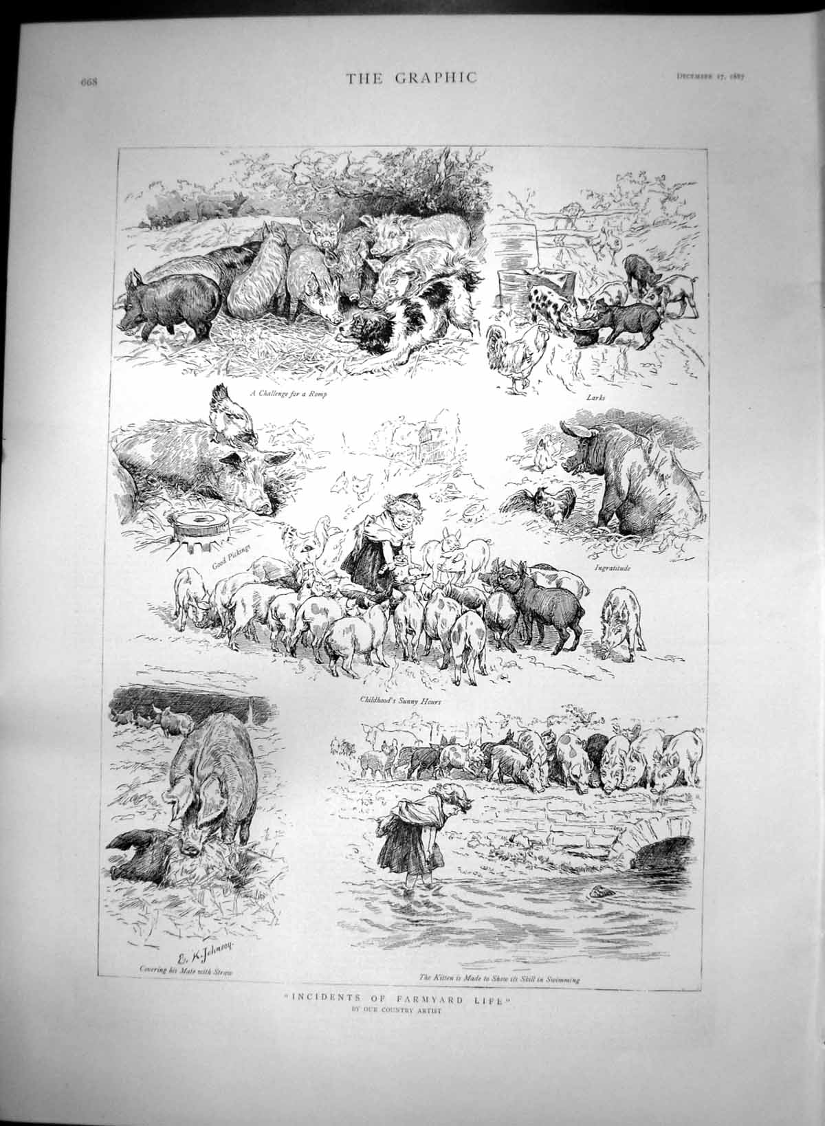 [Print Incidents Farmyard Life Kitten Swimming Pigs Hens Dog 1887 240T111 Old Original]