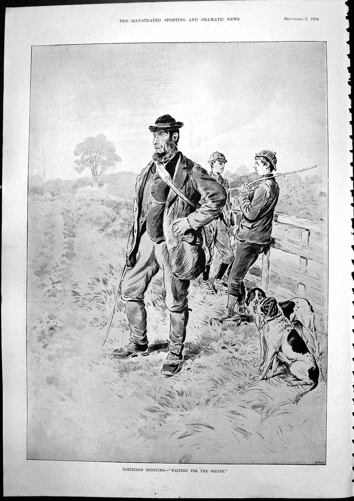 [Print Partridge Shooting Waiting For Squire Shooters Dogs 1893 968T139 Old Original]