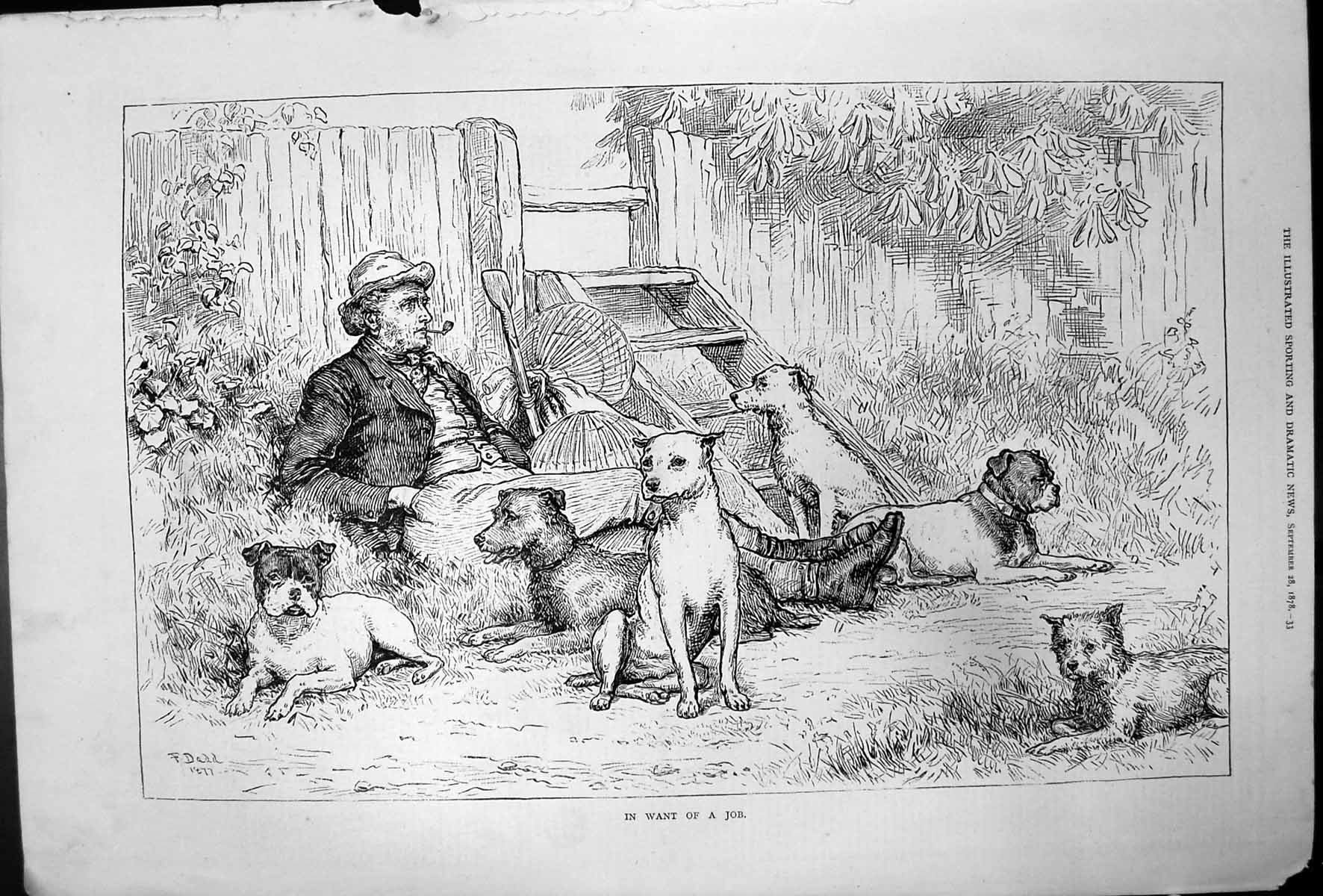 [Print In Want Job F Dadd Man Smoking Pipe Surrounded Dogs 1878 276T140 Old Original]
