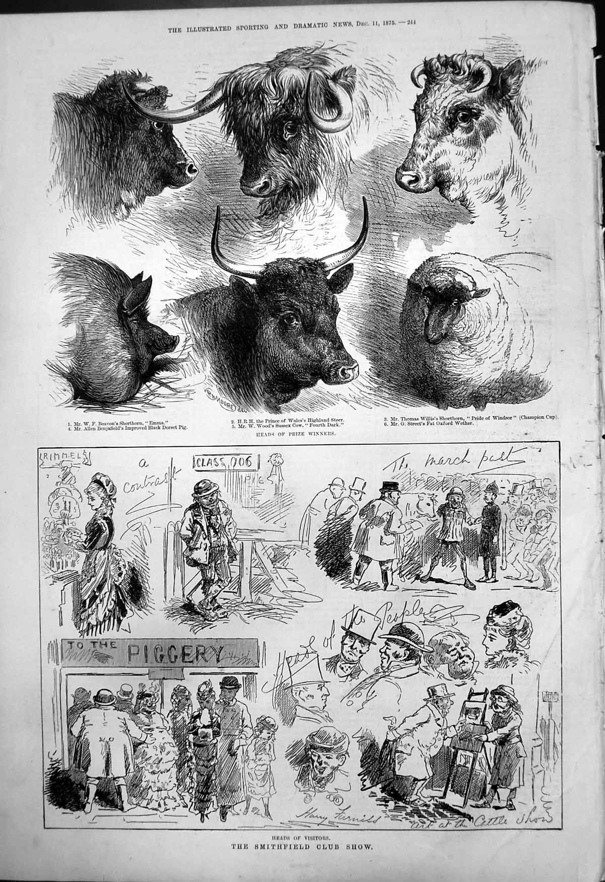 [Print Smithfield Club Show Heads Visitors Prize Winners Cattle Sheep 18 123T142 Old Original]