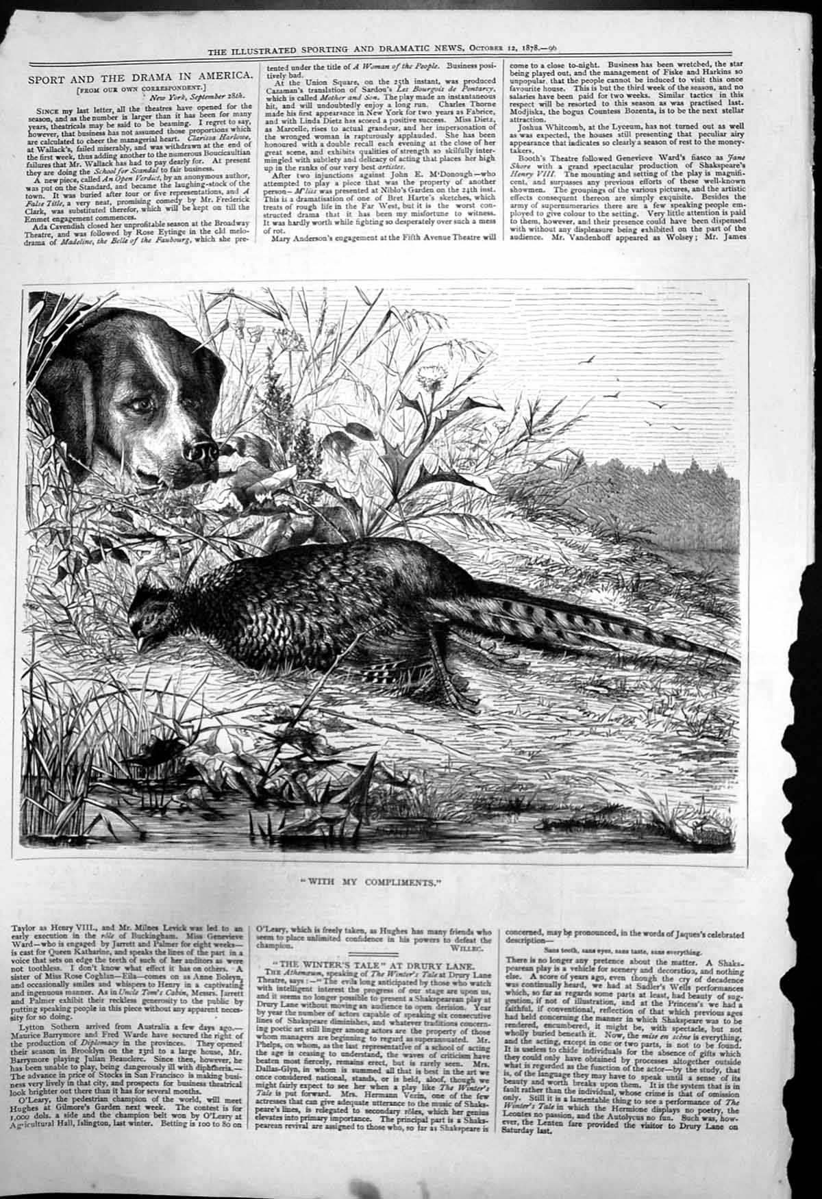[Print With My Compliments Dog Watching Dead Pheasant Riverbank 1878 216T142 Old Original]