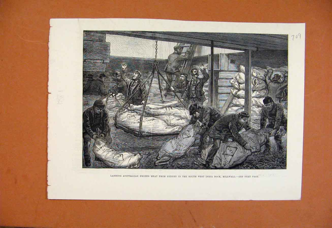 Old Antique Print Australian Frozen Meat In Indian Dock Millwall C1881 098270