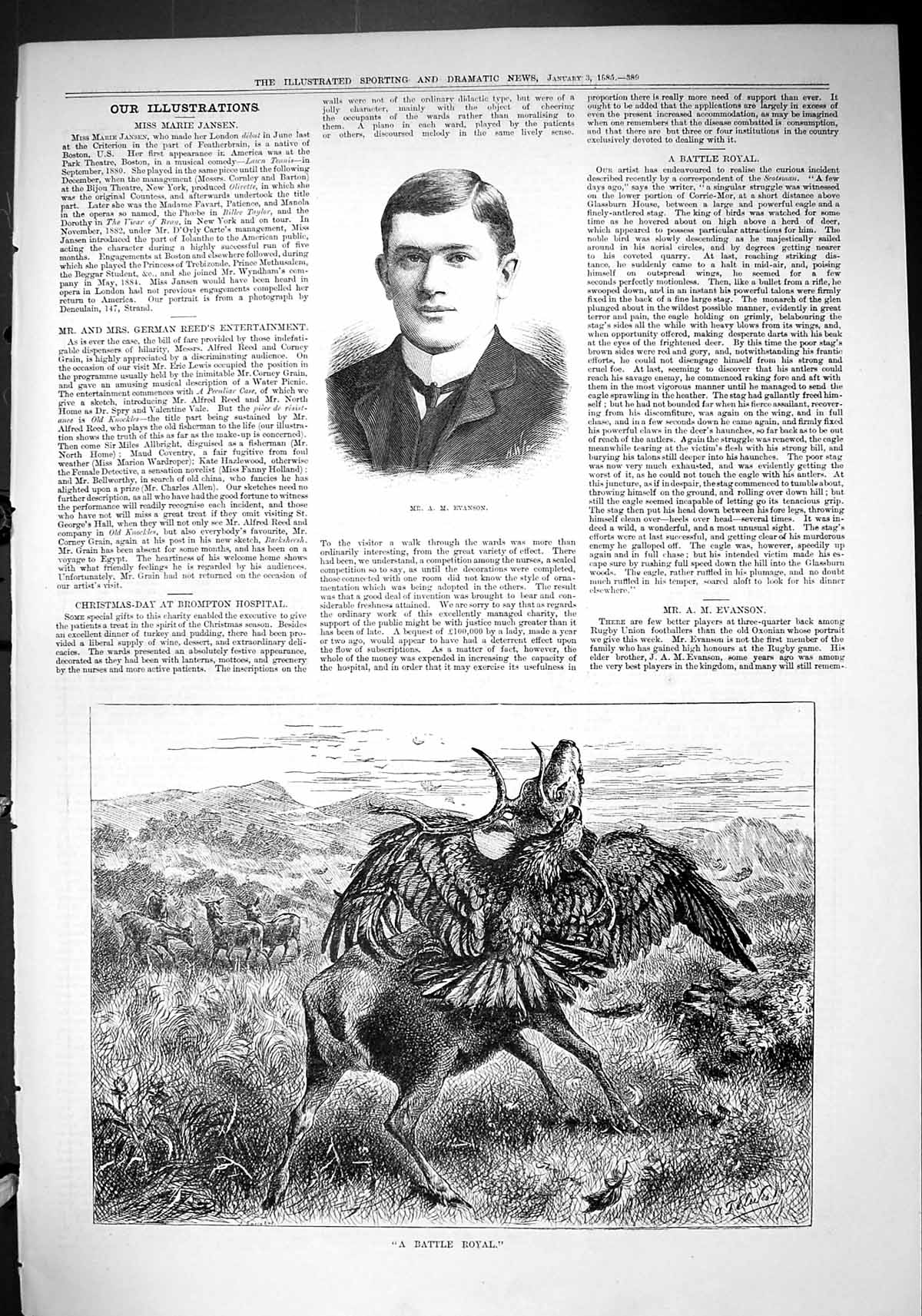 Old-1885-Mr-Evanson-Rugby-Battle-Royal-Stag-Attacked-Eagle-Bird-Prey-Victorian