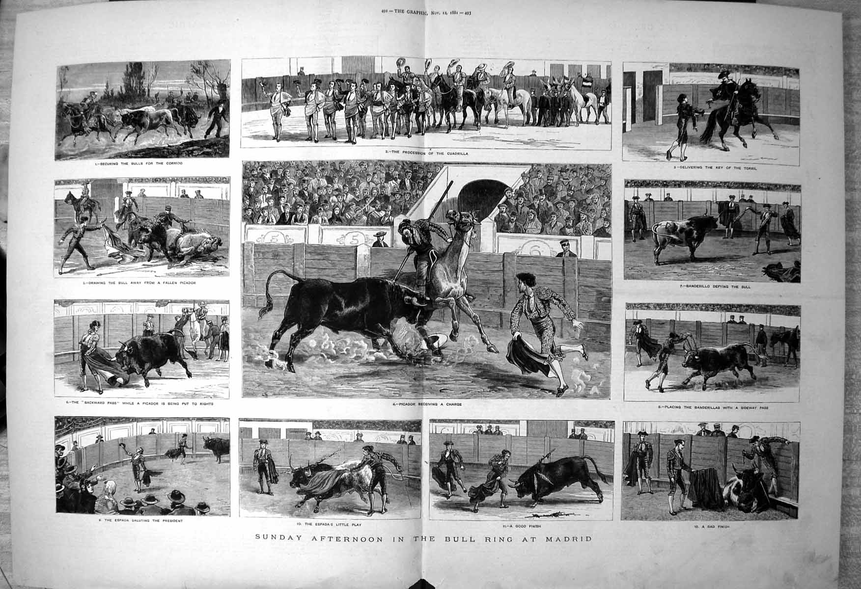 Antique-Print-Bull-Ring-Madrid-Bulls-Corrido-Picador-Charge-Banderillo-1881